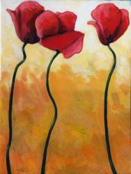 Large Still Life - Poppies
