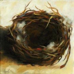 Abandoned Bird Nest