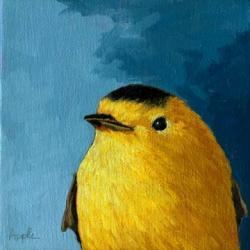 Proud - Baby Warbler