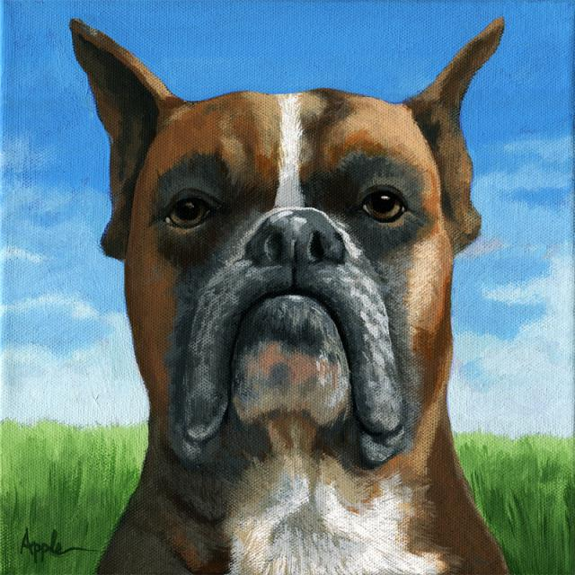 Barry Boxer dog portrait realistic animal painting