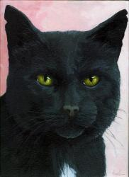 Brambles - black cat portrait