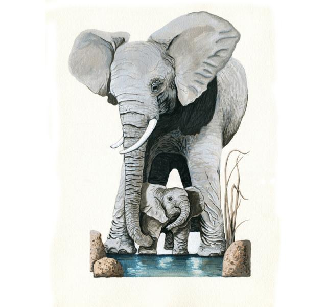Elephants - Original illustration Save Earth Series