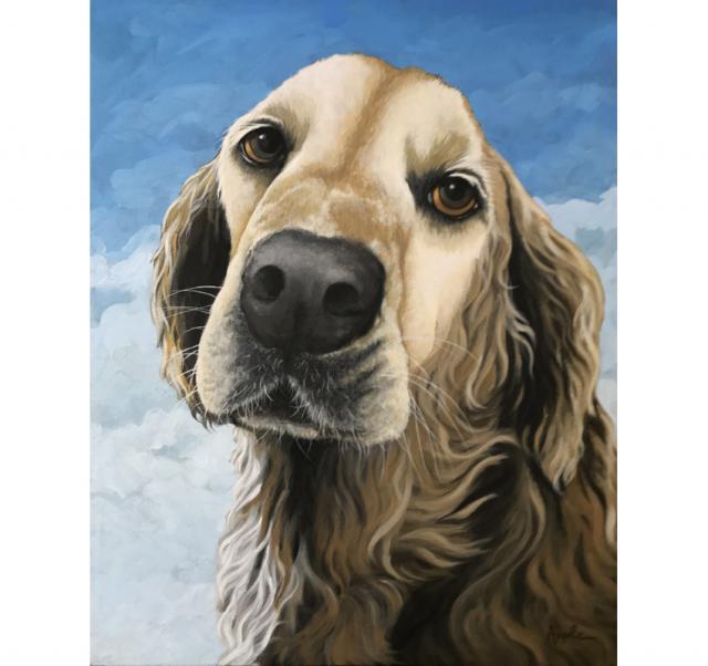 Gracie - Golden Retriever dog portrait
