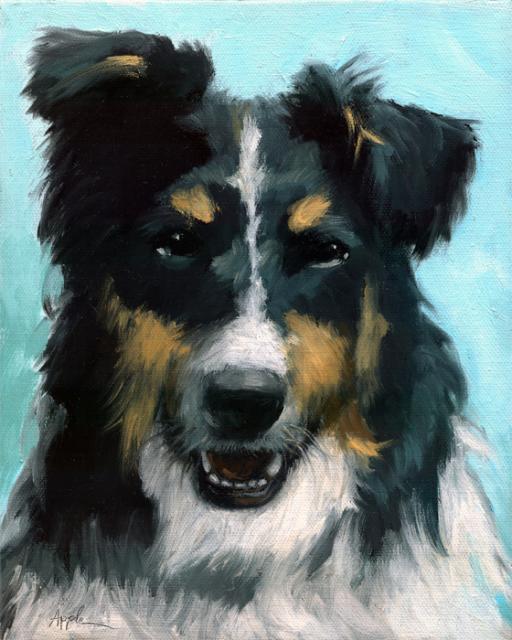 Ozzie dog portrait