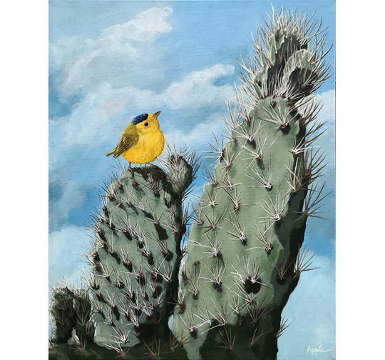 Cactus and Wilson's Warbler wildlife original nature painting