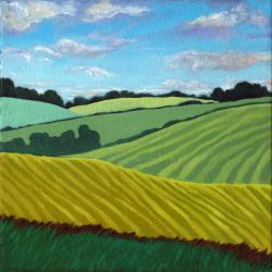 Summer Fields - contemporary landscape