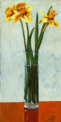 Springtime Daffodiles - still life