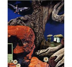 Mushroom People - surreal fantasy original collage