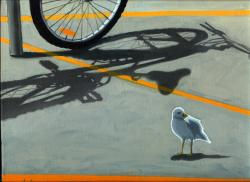 Where Did They Go? Bicycle and bird