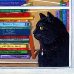 Cat Magic black cat portrait in window